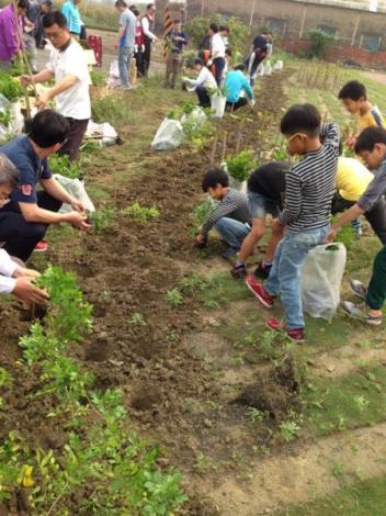 植樹節活動6