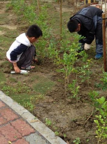 植樹節活動7
