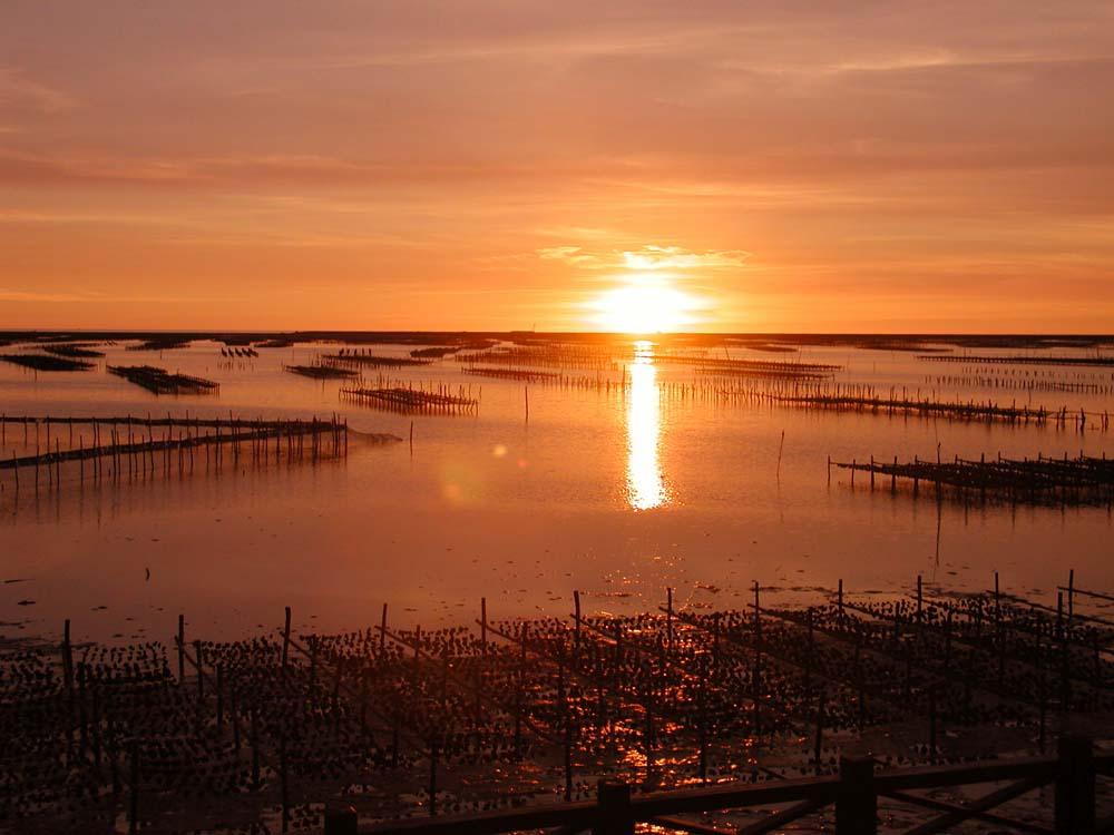 臺南市七股區公所全球資訊網,區內風景景名勝,七股潟湖介紹。