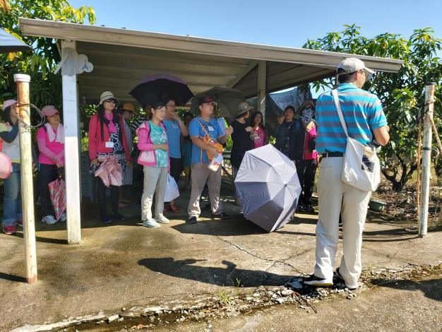 大內國中林志秋主任沿路介紹二溪的植物,讓參加者認真聽導覽