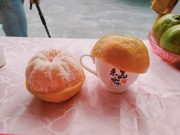 東山咖啡vs椪柑