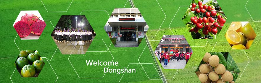 Dongshan Agricultural products