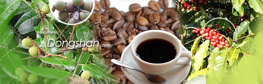 Dongshan Coffee