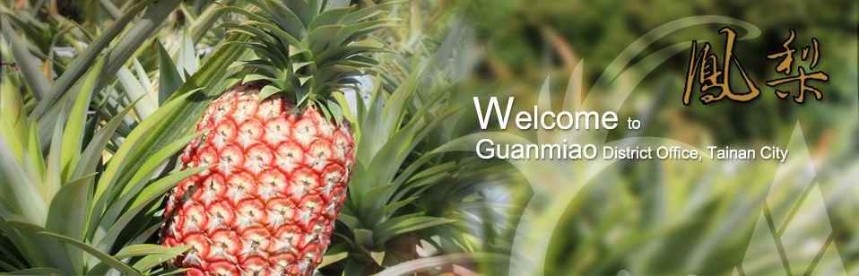 guanmiao pineapple JPG