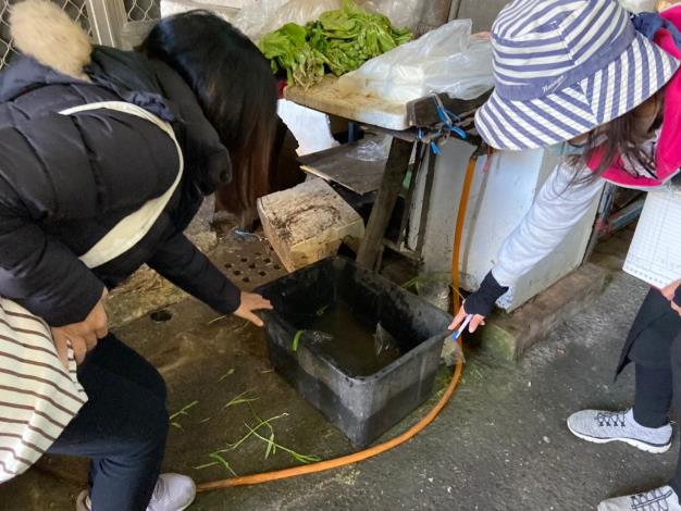 衛生所稽查人員發現一個積水容器