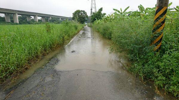 請勿通行 南119線(社子往中脇路段)積水