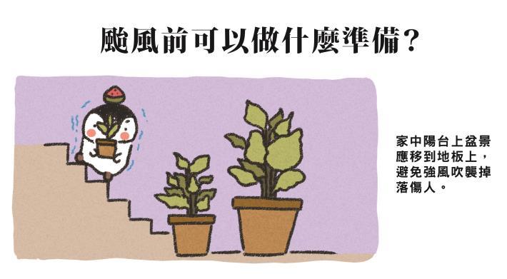 3.移動並固定高處盆栽、裝飾品,以免掉落傷人