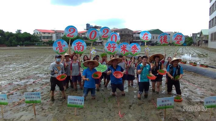 2020臺南好米季稻田彩繪插秧活動照片,共11張