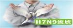 H7N9網站