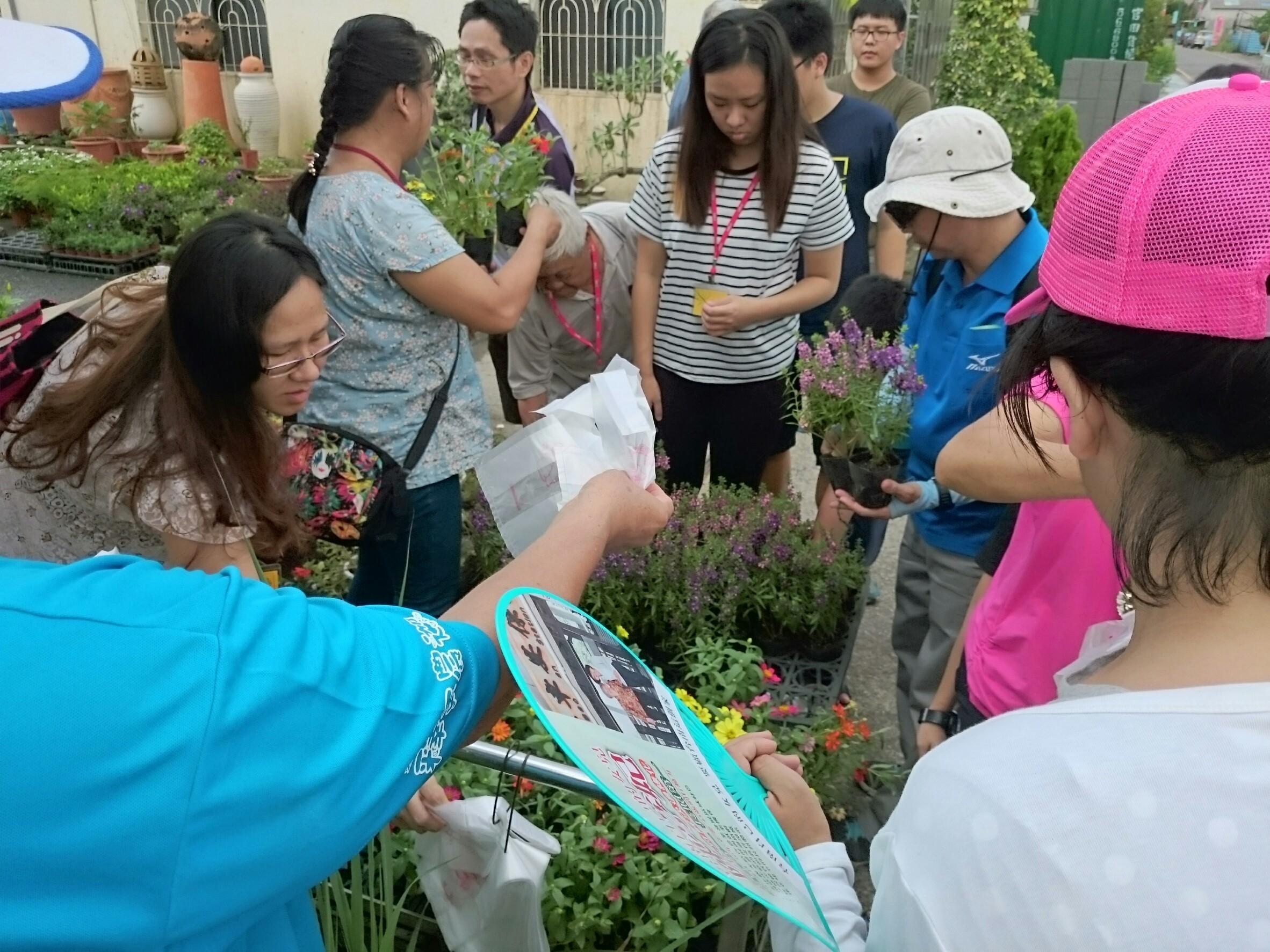 民眾參觀七甲花卉