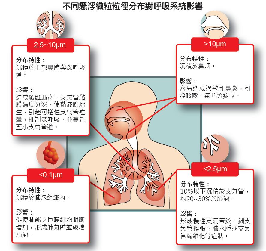 不同懸浮微粒粒徑分布對呼吸系統影響