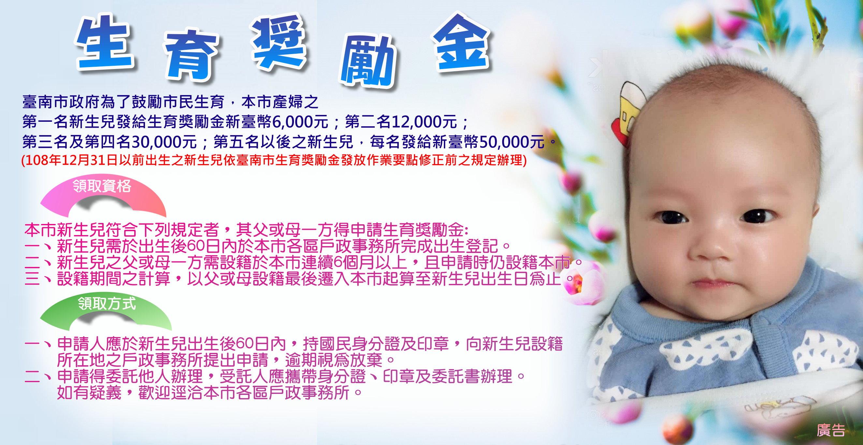 臺南政府市生育獎勵海報