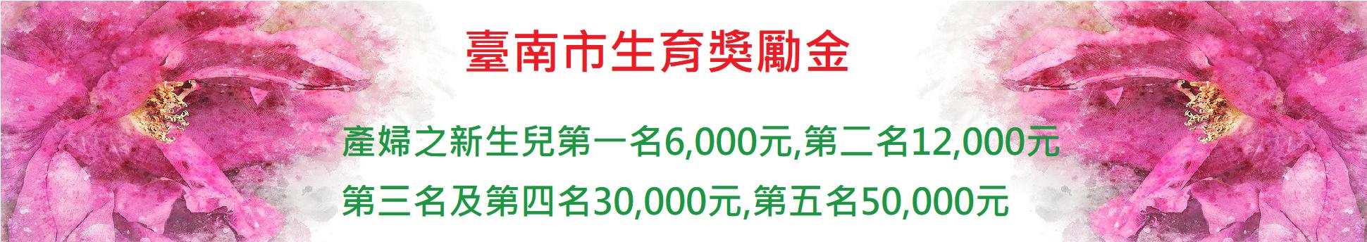 臺南市生育獎勵金